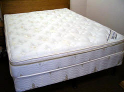 Harmony Air Bed Mattress Cover can be used as a Somma Replacement Top